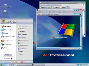 XP Professional v3